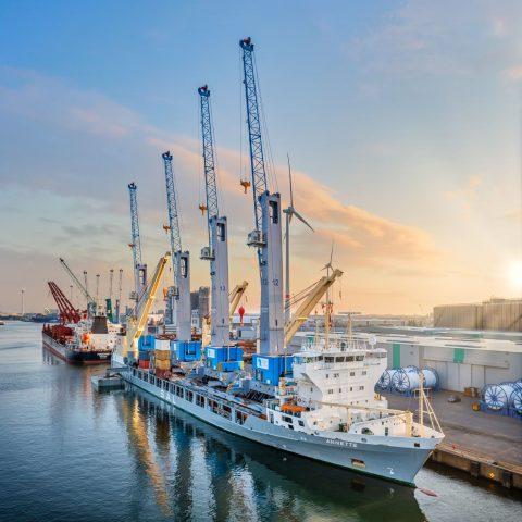 Jumbo-SAL-Alliance transports cranes to Africa